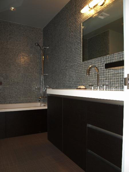 sleek-contemporary-bath